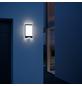 STEINEL Sensor-Außenleuchte »L 240 LED«, 7,5 W, inkl. Bewegungsmelder-Thumbnail