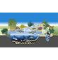 OASE Set: Teichfilter »BioPress 4.000«-Thumbnail
