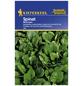 KIEPENKERL Spinat oleracea Spinacia »Monnopa«-Thumbnail