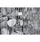 BELLISSA Spiralgabione, BxHxL: 100 x 50 x 100 cm, Stahl-Thumbnail