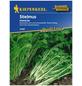 KIEPENKERL Stielmus Brassica rapa var. rapa »Namenia«-Thumbnail