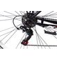 KCP Trekkingrad »Wild Cat Gent«, 28 Zoll, 18-Gang, Herren-Thumbnail