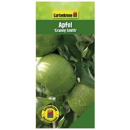 GARTENKRONE Apfel, Malus domestica »Granny Smith«, Früchte: sauer, zum Verzehr geeignet