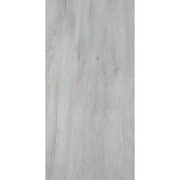 Bodenfliese, Feinsteinzeug, BxL: 30 x 60 cm, grau