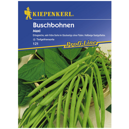 KIEPENKERL Buschbohne vulgaris var. nanus Phaseolus »Maxi«