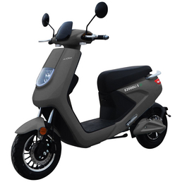 LuXXon E-Scooter »E2000«, 25 km/h (max.), 2000 W