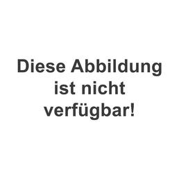 Reinigungsmittel, für Speckstein/Naturstein, 0,5 l