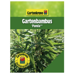 GARTENKRONE Gartenbambus murielae Fargesia »Panda«