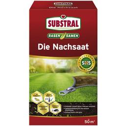 SUBSTRAL® Rasensamen »Die Nachsaat«, 1 kg