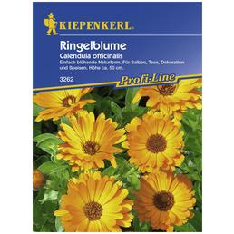 KIEPENKERL Ringelblume officinalis Calendula