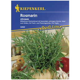 KIEPENKERL Rosmarin officinalis Rosmarinus
