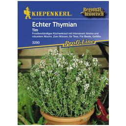 KIEPENKERL Thymian vulgaris Thymus