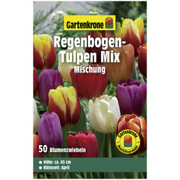 GARTENKRONE Triumph-Tulpe Tulipa X hybrida »Mischung«, bunt