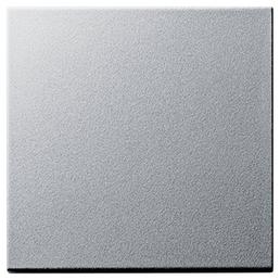 GIRA Wippe, Schalterserie System 55, Kunststoff, Silber